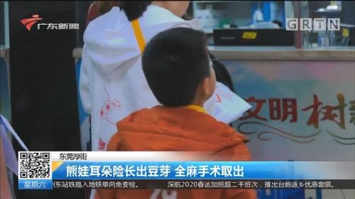 东莞厚街:熊娃耳朵险长出豆芽 全麻手术取出