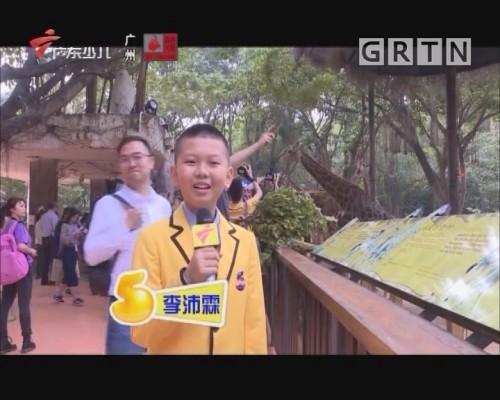 """[2020-01-16]南方小记者:CBA球星秒变动物保育园 演绎""""旅游+体育""""魅力"""