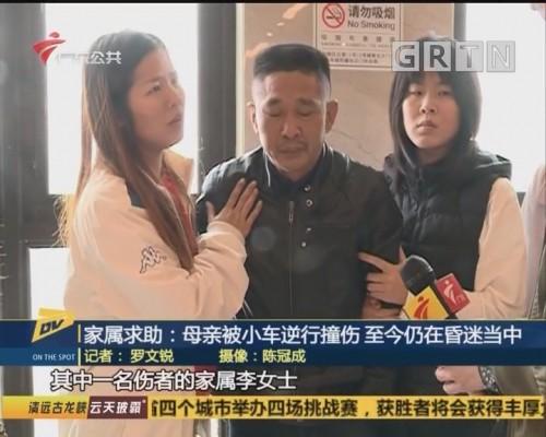 (DV现场)家属求助:母亲被小车逆行撞伤 至今仍在昏迷当中