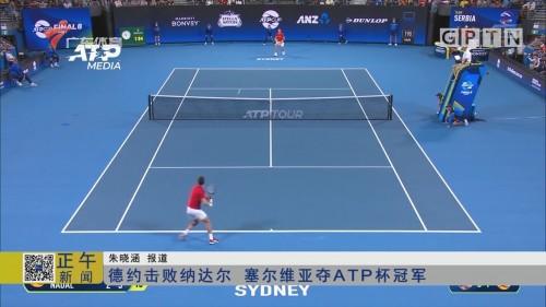德约击败纳达尔 塞尔维亚夺ATP杯冠军