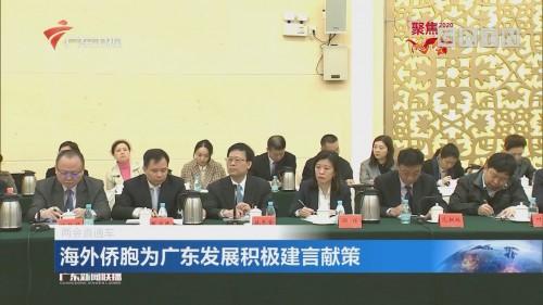 海外侨胞为广东发展积极建言献策