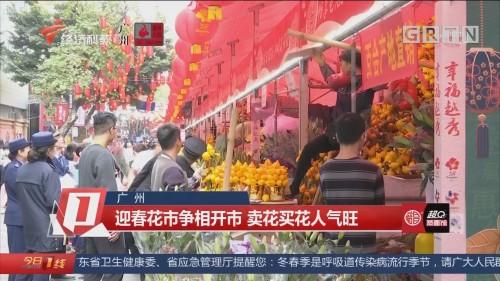 广州 迎春花市争相开市 卖花买花人气旺