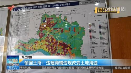 珠江调查 镇国土所:违建商铺违规改变土地用途