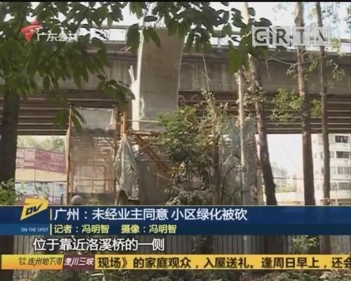(DV现场)广州:未经业主同意 小区绿化被砍