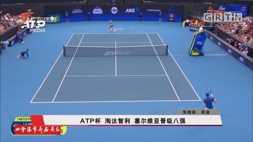 ATP杯 淘汰智利 塞尔维亚晋級八强
