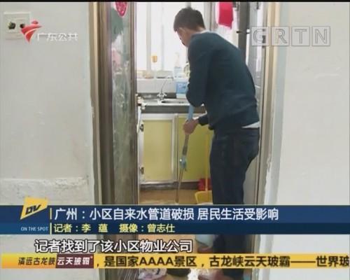 (DV现场)广州:小区自来水管道破损 居民生活受影响