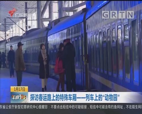 """探访春运路上的特殊车厢——列车上的""""动物园"""""""