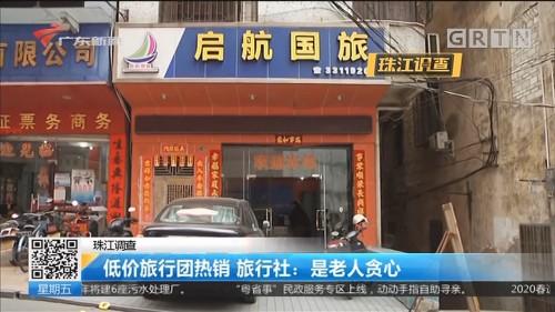 珠江调查 低价旅行团热销 旅行社:是老人贪心
