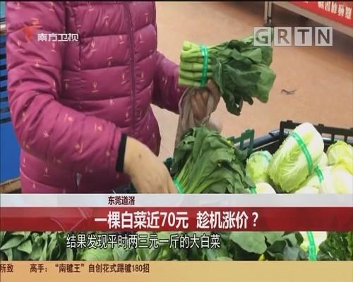 东莞道滘:一棵白莱近70元 趁机涨价?