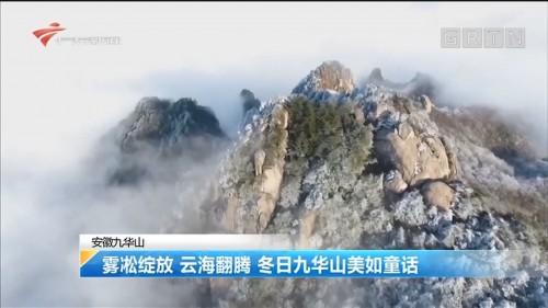 安徽九华山:雾凇绽放 云海翻腾 冬日九华山美如童话