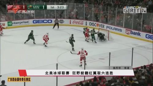 北美冰球联赛 狂野掀翻红翼取六连胜