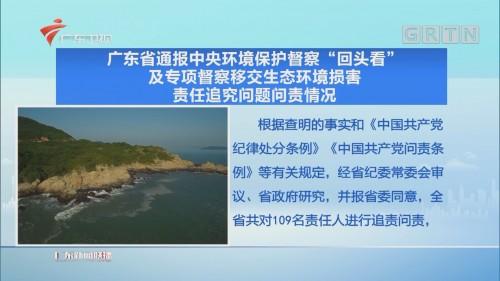 """广东省通报中央环境保护督察""""回头看""""及专项督察移交生态环境损害责任追究问题问责情况"""