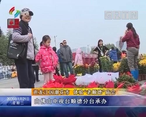 """逛龙江国潮花市 体验""""老顺德""""庙会"""