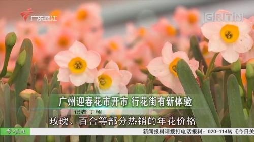 广州迎春花市开市 行花街有新体验