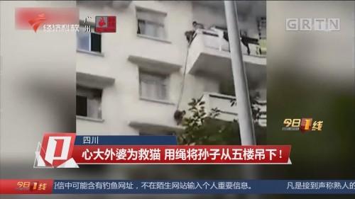 四川:心大外婆为救猫 用绳将孙子从五楼吊下!