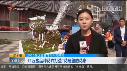 """2020深圳迎春花市今天开市 12万盆品种花卉打造""""花展般的花市"""""""