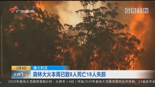 澳大利亚:森林大火本周已致8人死亡18人失踪