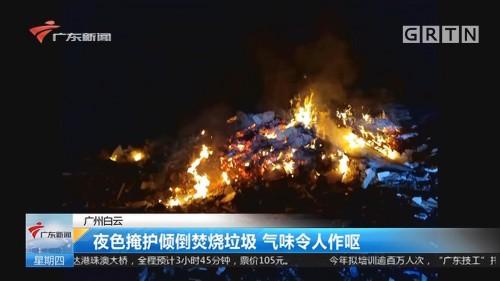 广州白云:夜色掩护倾倒焚烧垃圾 气味令人作呕