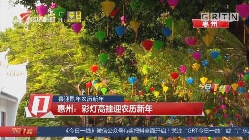 喜迎鼠年农历新年 惠州:彩灯高挂迎农历新年