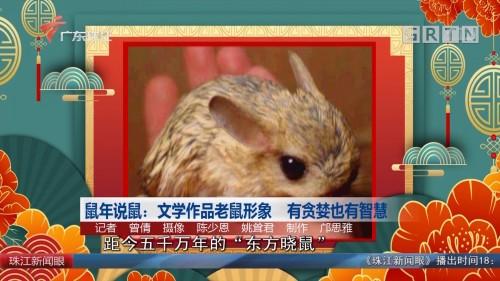 鼠年说鼠:文学作品老鼠形象 有贪婪也有智慧