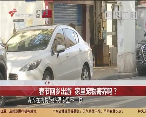 广州:春节回乡出游 家里宠物寄养吗?