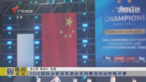 2020国际泳联冠军游泳系列赛深圳站昨晚开赛