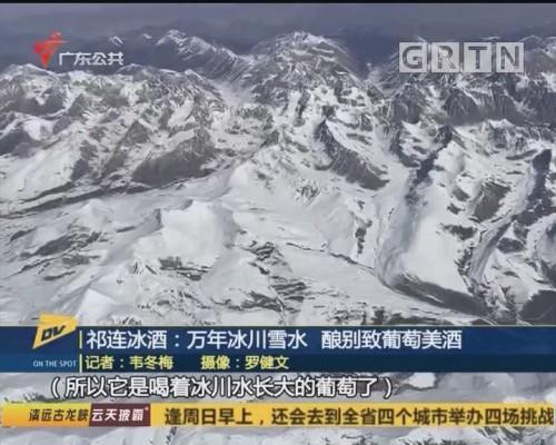 (DV现场)祁连冰酒:万年冰川雪水 酿别致葡萄美酒