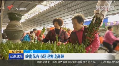 广州 岭南花卉市场迎客流高峰