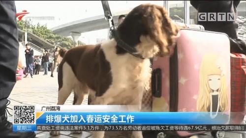 广州荔湾:排爆犬加入春运安全工作