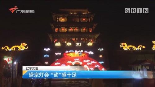 """辽宁沈阳:盛京灯会 """"动""""感十足"""