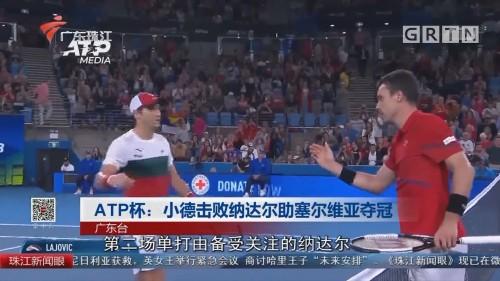 ATP杯:小德击败纳达尔助塞尔维亚夺冠
