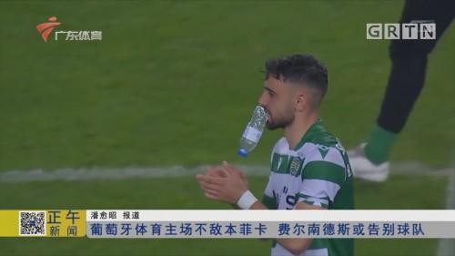 葡萄牙体育主场不敌本菲卡 费尔南德斯或告别球队