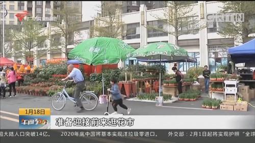 惠州:迎春节逛花街 盆栽花艺成主打商品