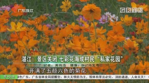"""湛江:景区关闭 七彩花海成村民""""私家花园"""""""