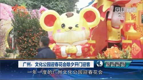 广州:文化公园迎春花会除夕开门迎客