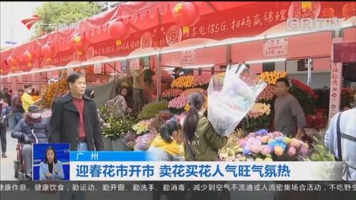 广州:迎春花市开市 卖花买花人气旺气氛热