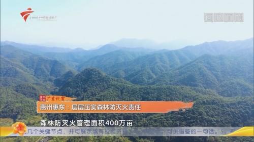 惠州惠东:层层压实森林防灭火责任