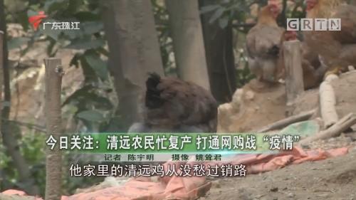 """今日关注:清远农民忙复产 打通网购战""""疫情"""""""