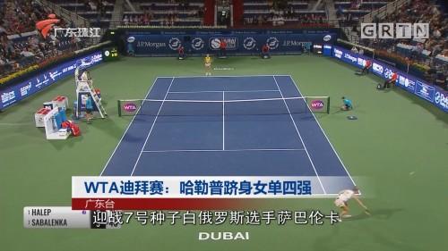 WTA迪拜赛:哈勒普跻身女单四强