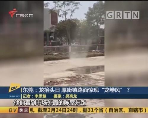 """(DV现场)东莞:龙抬头日 厚街镇路面惊现""""龙卷风""""?"""