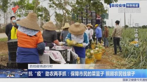 """战""""疫""""助农两手抓:保障市民的菜篮子 照顾农民钱袋子"""