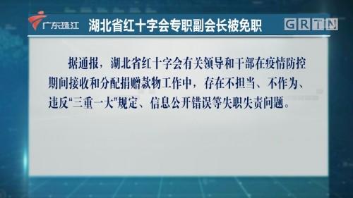湖北省红十字会专职副会长被免职