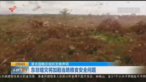 联合国农粮组织发表声明:东非蝗灾将加剧当地粮食安全问题