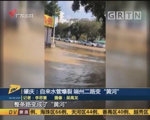 """(DV现场)肇庆:自来水管爆裂 端州二路变""""黄河"""""""