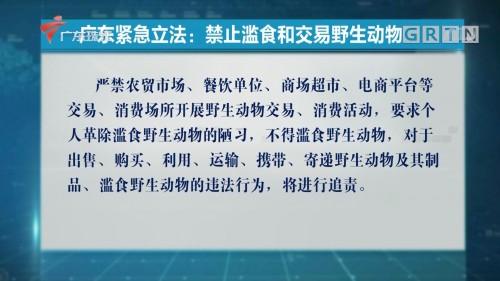 广东紧急立法:禁止滥食和交易野生动物