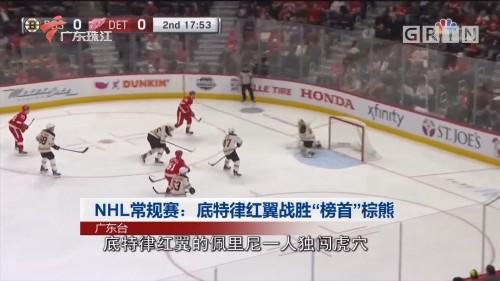 """NHL常规赛:底特律红翼战胜""""榜首""""棕熊"""