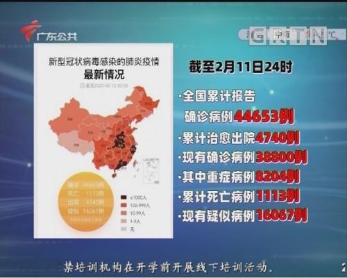 最新疫情地图和数据(2月11日24时)