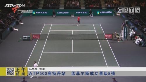 ATP500鹿特丹站 孟菲尔斯成功晋级8强
