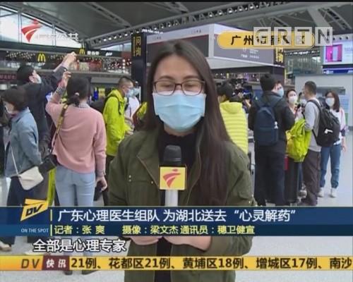 """(DV现场)广东心理医生组队 为湖北送去""""心灵解药"""""""