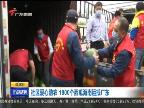 社区爱心助农 1800个西瓜海南运抵广东